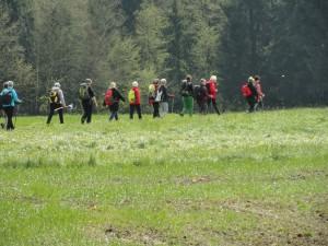 Pilgerwanderung 28. April - 1. Mai  Moosdorf, Ibmer Moor, Perwang, Seeham, Kaiserbuche bei Obertrum