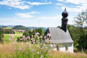 Gemeindebilder Witzmannsberg