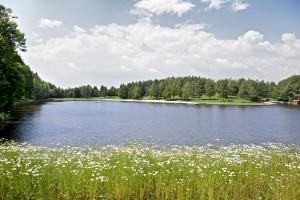 Gemeindebilder Eging am See