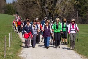 pilgern im Salzburger Land, Voroesterliche Pilgerwanderung von Heiligenstatt/ Lengau über Gebertsham bis Seeham, 2012-04-03; Foto: Chris Hofer; Bild zeigt: am Forstweg bei Zellhof bei Mattsee